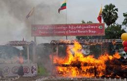 Myanmar tiêu hủy lượng ma túy trị giá 19,7 triệu USD