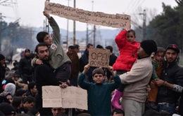 LHQ cảnh báo thảm họa nhân đạo tại biên giới Macedonia - Hy Lạp