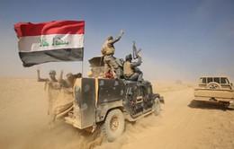 Iraq chuẩn bị cho giai đoạn tiếp theo của chiến dịch giải phóng Mosul