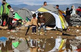 Tình cảnh khốn cùng ở trại tị nạn của người dân sơ tán vì chiến tranh