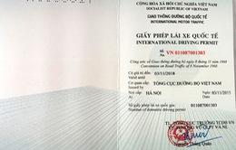 Thu hồi GPLX quốc tế trong 3 năm với người có hành vi gian lận