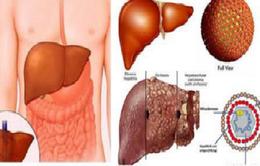 Chữa viêm gan B, C theo hướng điều trị suốt đời