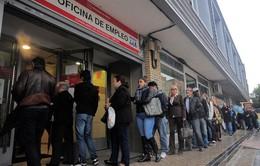 Châu Âu đã làm gì để giảm tỉ lệ thất nghiệp?