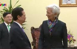Thủ tướng Nguyễn Tấn Dũng tiếp Tổng Giám đốc điều hành IMF