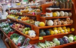 Giá lương thực thế giới thấp nhất trong 7 năm