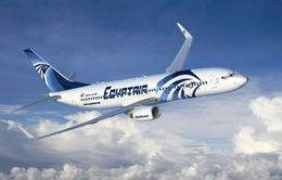 Vụ máy bay Ai Cập mất tích: Không loại trừ khả năng bị khủng bố