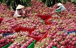 Thách thức nông sản đặc hữu thời hội nhập (17h20, VTV1)
