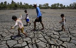Biến đổi khí hậu làm tăng nguy cơ bệnh tật