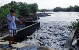 Ô nhiễm nghiêm trọng tại các cơ sở chế biến hải sản Bà Rịa - Vũng Tàu