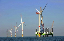 Scotland xây dựng nhà máy điện gió nổi ngoài khơi lớn nhất thế giới