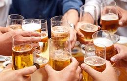 Tiêu dùng rượu bia ở Việt Nam ngày càng gia tăng
