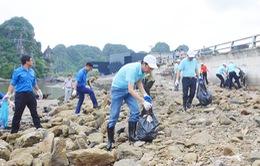 Quảng Ninh: Ra quân làm sạch ven bờ Vịnh Hạ Long