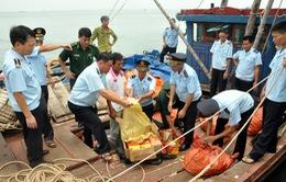 Quảng Ninh: Bắt giữ gần 2 tấn pháo lậu trên tàu gỗ