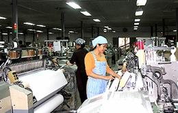 Nhà máy Dệt Nam Định – Viết tiếp trang sử mới (Bản tin Thời sự 19h00, ngày 9/7 trên VTV1)