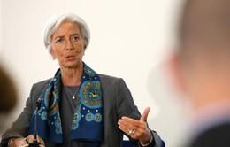 IMF kêu gọi các nền kinh tế mới nổi cải thiện chính sách