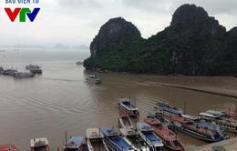 Cháy tàu hạng sang trên đảo Tuần Châu: May mắn vì tàu không cháy khi đang lưu trú trên biển
