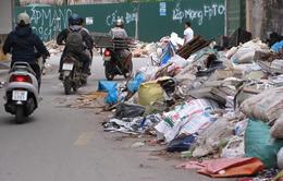 Hà Nội: Rác thải tràn ngập trên địa bàn phường Mai Động