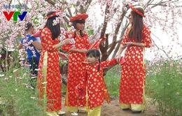 Giới trẻ Hà thành đón Tết sớm tại vườn đào Nhật Tân
