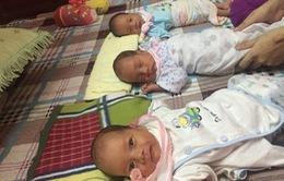 Vẻ đáng yêu của 3 bé trai chào đời còn nguyên trong bọc ối