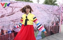 Rộn ràng lễ hội mùa xuân Hàn Quốc Bom Chugje