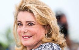 Các huyền thoại điện ảnh 'thống trị' danh sách đề cử Oscar của điện ảnh Pháp