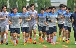 U23 Việt Nam vs U23 Hàn Quốc: Bài test chất lượng (19h00 ngày 9/5 - Trực tiếp trên VTV6 & VTV6HD)