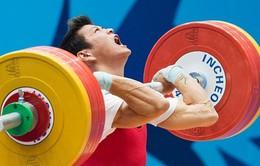 Cử tạ Việt Nam đi vào lịch sử với 3 suất dự Olympic Brazil 2016
