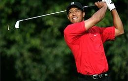 Tiger Woods và tham vọng trở lại đỉnh cao