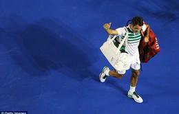 Federer phải nghỉ thi đấu 1 tháng vì chấn thương đầu gối