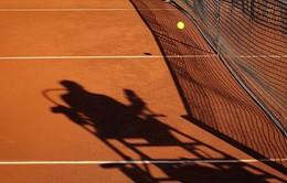 Nhiều trọng tài quần vợt bị cấm hành nghề vì dàn xếp tỉ số
