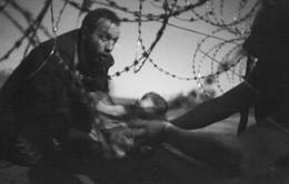 Ảnh người cha tị nạn 'tuồn' con qua rào thép gai đoạt giải Báo chí thế giới