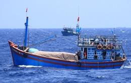 Malaysia bắt giữ 23 ngư dân Việt Nam, tịch thu tàu cá và toàn bộ hải sản