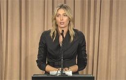"""Maria Sharapova có thể """"trắng án"""" vụ sử dụng doping"""