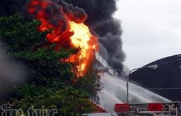 CHÙM ẢNH: Đám cháy kinh hoàng tại công ty nệm Vạn Thành, TP.HCM (cập nhật)