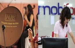 Thanh tra Chính phủ công bố quyết định thanh tra toàn diện Dự án Mobifone mua 95% cổ phần của AVG