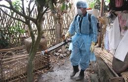 Tuyên Quang: Triển khai khẩn cấp các biện pháp khoanh vùng dập dịch viêm gan vi-rút A