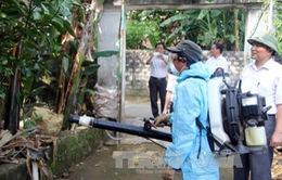 Khẩn trương thực hiện các giải pháp ngăn chặn sốt xuất huyết tại xã Diễn Thịnh, Nghệ An