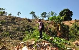 Quảng Ngãi: Nhiều di tích hoang phế