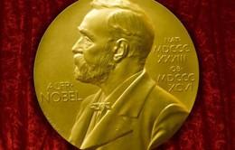 18h hôm nay sẽ trao giải Nobel Văn học