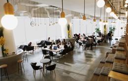 Trải nghiệm mô hình văn phòng dịch vụ - làm việc tích hợp