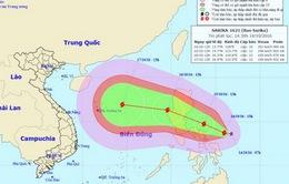Bão Sarika tiến vào Biển Đông, cảnh báo lũ khẩn cấp từ Hà Tĩnh đến Huế