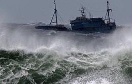 Cập nhật tin thời tiết trưa 18/10: Cơn bão số 7 - Sóng mạnh, gió giật cấp 9 - cấp 10