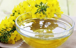 Tác dụng của dầu cải trong việc giảm mỡ bụng