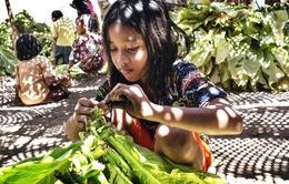 Mối nguy hại sức khỏe đối với lao động trẻ em tại các trang trại thuốc lá Indonesia