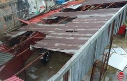 Bão số 1 càn quét, các nhà máy ở Thái Bình thiệt hại nặng