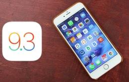 iOS 9.3 khiến iPhone 6S, 6S Plus gặp lỗi hàng loạt