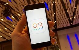 Apple phát hành bản vá iOS 9.3 dành riêng cho dòng iPhone, iPad cũ