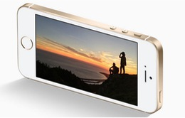 5 smartphone thay thế hoàn hảo cho iPhone SE