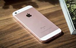 Điện thoại giá rẻ ngày càng phổ biến