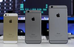 iPhone màn hình 4 inch sẽ mang tên iPhone 5SE?